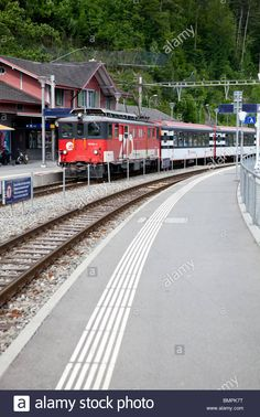 Stock Photo - A Swiss SBB train leaving Brienz station in the Bernese Oberland, Switzerland Engelberg, Swiss Railways, Train Station, Trains, Vectors, Leaves, Illustrations, Stock Photos, Lucerne