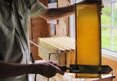 The Homestead Survival | Make Re-Usable Honey Comb By De-Capping With A Heat Gun | Beekeeping & Bees & Homesteading  http://thehomesteadsurvival.com