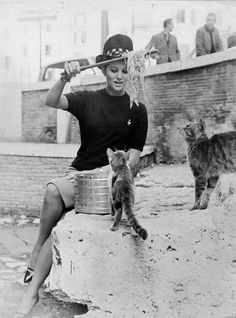 OnThisDay & Facts ‏@NotableHistory  Claudia Cardinale with some cats in the 1960s