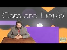 Game Rating Review | Cats Are Liquid