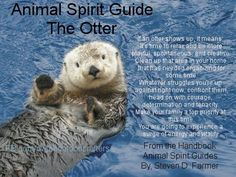 The Otter   If an otter shows up, it means:   It's time to relax and be more playful, spontaneous, and creative.   Clean up that area in your home that has needed organizing for some time.   Whatever struggles you're up against right now, confront them, head on with courage, determination and tenacity.   Make your family a top priority at this time.   You are going to experience a surge of energy and vitality