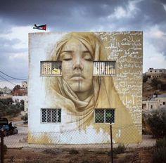 By Jonathan Darby at Kharja, Irbid, Jordan