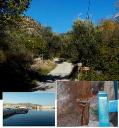 https://flic.kr/s/aHskrCfr1i | 145 White River: Makry Gialos to Aspros Potamos | Flowers, Birds, Butterflies and Fungi as we walk the White River from Makry Gialos to Aspros Potamos in this week's #CreteNature blog bit.ly/2DEFtKT