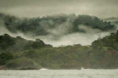Fog at Isla Coiba, Panama  #fishinginpanama