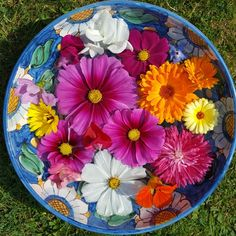 Flower bowls of seasonal colour are a lovely way to decorate a table.