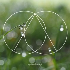 Equilateral Triangle by plumrosefern on DeviantArt