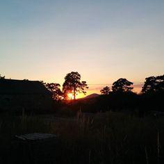 #sunset #sun #summer