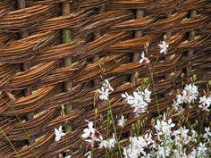 A hand woven panel  is a good backdrop for plantings in an English garden design.