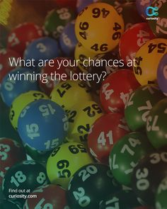 Learn the real odds behind winning the lottery. Is it worth buying a ticket?: https://curiosity.com/courses/what-are-your-chances-of-winning-the-euromillions-number-hub-ep-2-head-squeeze-head-squeeze?utm_source=pinterest&utm_medium=pinterest&utm_campaign=051914pin