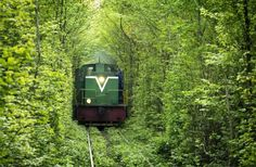 One of the most beautiful tree tunnels in World can be found near the city of Klevan in Ukraine - The Tunnel of Love. This is in fact a train tunnel of trees. It's the main attraction in the area and also one of the most beautiful places in Ukraine. Le Tunnel, Train Tunnel, Train Tracks, Train Rides, Romantic Places, Beautiful Places, Tunnel Of Love Ukraine, Trains, Magical Tree