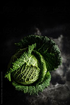 Savoy cabbage by Federica Di Marcello - Stocksy United Fruit And Veg, Fruits And Veggies, Vegetables, Dark Food Photography, Still Life Photography, Savoy Cabbage, Recipe For Mom, Kitchen Recipes, Food Design