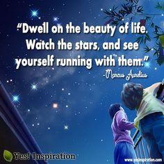 #watch the stars