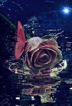 Цветочные Обои, Розовые Обои, Картинки Любовь, Красивые Розы, Синие Цветы, Цветочные Фоны, Искусство Из Роз