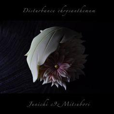 """一日一菓 「葉乱菊」 #煉切 製  #wagashi of the day """"Disturbance chrysanthemum""""  本日は「葉乱菊」です。 針切りをいくつか単発で撮りましたので、順にご紹介させて頂きます。  Today it is """"toward Rangiku"""". Today is """"Rangiku"""". Since I took in several single-shot, I will turn to introduce.  Aujourd'hui est """"Rangiku"""". Depuis que je pris dans plusieurs mono-coup, je me tournerai à introduire.  Oggi è il """"Rangiku"""". Da quando ho preso in diversi single-shot, mi rivolgerò a introdurre.  今天是""""乱菊""""。 自从我参加了几个单拍,我会转介绍。  #和菓子 #和菓子職人 #菊 #針切り #一日一菓 #sweets #三堀 #art…"""