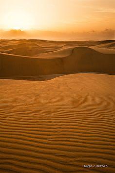 Venezuela. Le desert de los Médanos de Coro.