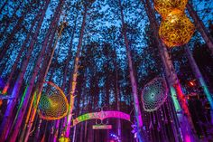 Gallery – The Art of Electric Forest | Electric Forest Festival