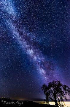 Star Gazing #california #galaxy #milky way