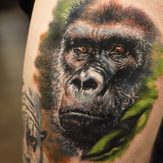Colorful tattoo of a gorilla by Seunghyun Jo | Intenze ink
