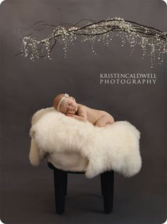 Props for newborn photography -
