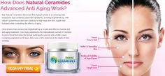 For more ==== >>>>>> http://guidemesupplements.com/natural-ceramides-youth-cream/ Natural Ceramides Youth Cream They are one of the component lipids that make up sphingomyelin one of the major lipids in the lipid bilayer. Contrary to previous assumptions that ceramides and other sphingolipids found in cell membrane were purely structural elements Natural Ceramides Youth Cream ceramide can participate in a variety of cellular signaling examples include regulating differentiation.