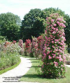 L'Haye les Roses  Paris