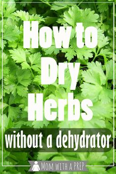 Think you have to have an expensive dehydrator to dry your herbs? Look at the options avaialble to you that don't require electricity!