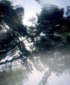 Taiteilija: Palmgren Dan  Teosnimi: Safiiri ja teräs  Tekniikka: valokuva  Koko: 124x142 cm/ 88x76 cm  Vuosi: 2011  Lainahinta: 100 €/kk tai 60 €/kk  Hinta: 2500 €/ 1800 €  Lisätietoja: teos toimitetaan Taidelainaamoon tilauksesta