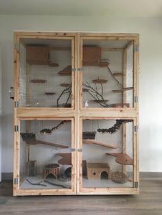 Homemade. Cage pour chinchillas.