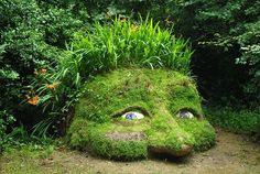 Lost Gardens of Heligan, England | The Lost Gardens of Heligan, Cornwall | Flickr - Photo Sharing!