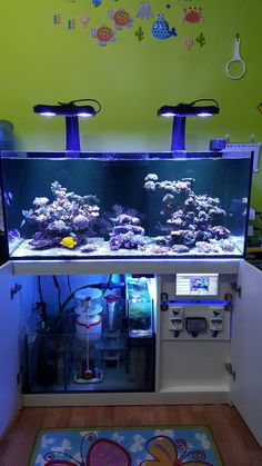 Saltwater Aquarium - Find incredible deals on Saltwater Aquarium and Saltwater Aquarium accessories. Let us show you how to save money on Saltwater Aquarium NOW! Saltwater Aquarium Setup, Aquarium Sump, Coral Aquarium, Saltwater Fish Tanks, Diy Aquarium, Aquarium Design, Marine Aquarium, Aquarium Fish Tank, Aquarium Ideas