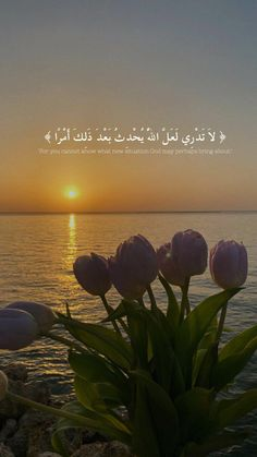 Islamic Love Quotes, Arabic Quotes, Qoutes, Bring It On, Life Changing, Beach, Outdoor, Quotations, Outdoors