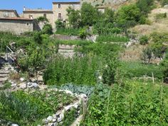Ancient pastoral village of Frattura (Scanno, Italy). In this picture a nice view of the garden area made of stones. Photo by Cinzia Carboni