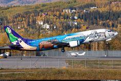 "Alaska Airlines ""Trans-Alaska run"" Boeing 737-490 @ FAI"