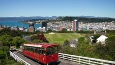 There are countless free things to do in Wellington, making it an affordable place to visit. This is my seven recommended free things to do in Wellington. New Zealand Beach, New Zealand Travel, Beautiful Places To Live, The Beautiful Country, New Zealand Attractions, Wellington New Zealand, Road Trip, Australia Tours, Living In New Zealand