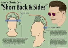 Here's a photo for folks to take in to the barbershop or to their stylist - for those who aren't completely sure how to tell their barber how to cut their hair. I typically ask for 1.5 or 2 on sides - and a taper for the back.