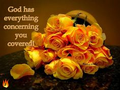 God has everything concerning you covered.