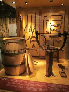 Wine Tour #DuVino #wine www.vinoduvino.com Plant Diseases, Wine Barrels, Rose Bush, Grape Vines, Table Lamp, Plants, Painting, Home Decor, Table Lamps