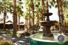 Boojum Tree's Hidden Gardens in Phoenix. Hidden Garden, Tree Wedding, Photo Tree, Digital Photography, Fountain, Photo Galleries, Gallery, Phoenix, Outdoor Decor