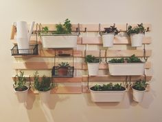 DIY IKEA living wall hack! Use the Sultan bed planks from Ikea (any size, depending on your space and wall strength), and large hooks to hang baskets filled with herbs and succulents.