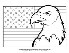 bald eagle coloring page for 3 Cheers For Animals Daisies