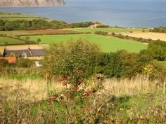 North Yorkshire coast, Robin Hoods Bay, England {photo by at ©Lucy at Attic24}