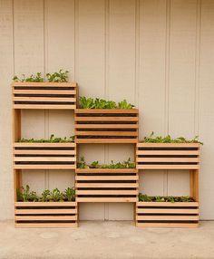 Vertical Jardim DIY usando caixas de madeira DIY Verde: elaborar a sua própria horta vertical que ocupa pouco espaço