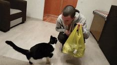 Nothing makes this rescue kitty happier than a hug from his humans. Meet Pusic the cat!Courtesy: @catpusicThis adorable tuxedo kitty demands love and cuddles every time his humans walk into the room. There's no escaping it. When he was just a kitten, he was brought back from the brink, and now he ca...