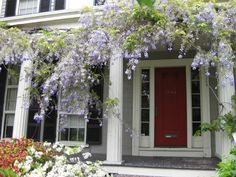 Every spring I look forward to this gorgeous display on Cambridge Street near Harvard Square in Cambridge - the wisteria draped porch on this Greek Revival. - See more at: http://centersandsquares.com/2009/05/23/wisteria-on-cambridge-street/#sthash.Haf19nOw.dpuf