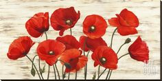 Shop for Global Gallery Serena Biffi 'French Poppies' Stretched Canvas. Get free delivery On EVERYTHING* Overstock - Your Online Art Gallery Store! Get in rewards with Club O! Painting Prints, Fine Art Prints, Framed Art, Wall Art, Red Poppies, Poppies Art, Poppies Painting, Home And Deco, Global Art