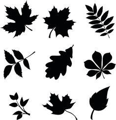 Set of leaves. Vector black silhouettes. vector art illustration