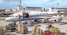 Douglas Dc 8, Douglas Aircraft, Cargo Airlines, Aircraft Pictures, Air Travel, Scandinavian, Aviation, Museum, Sky