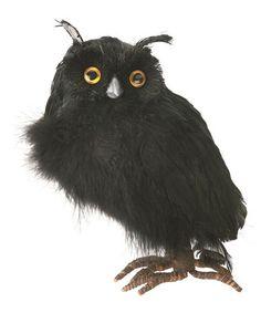Look at this #zulilyfind! Black Feather Owl Figurine #zulilyfinds