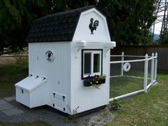 Chicken coop, can use as dog kennel.