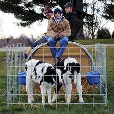 Small Animal Hut 4 6 W X 4 10 H X 8 2 L Farmtek In 2020